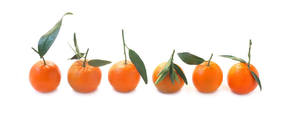 Ätherisches Öl des Monats November: Mandarine